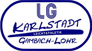29. Staustufenlauf Karlstadt